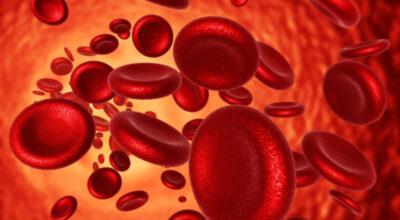 Профилактика железодефицитной анемии